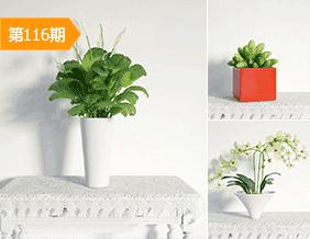 现代简约植物盆栽模型合辑16套