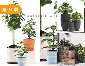 大型盆栽植物模型合辑15套