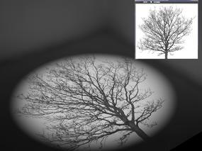 【一招渲染图文】3Dmax聚光灯使用方法