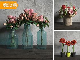 花卉植物模型合辑9套