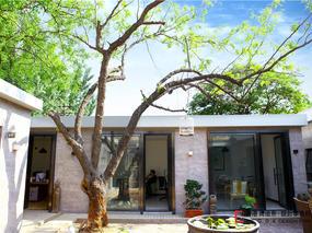 小隐入丘樊 大隐住朝市—— 《两颗枣树》北京小院设计