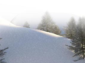 我在冬雪里,等你