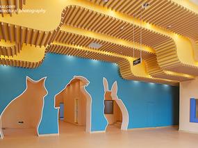 独尊建筑摄影:艾马仕幼儿园    | 教育文化空间