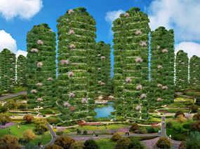 天九城市森林花园全球联营计划